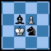 shredder schach spielen