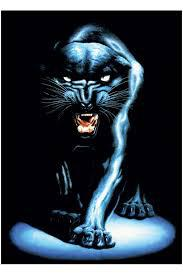 Angry_Black_Panther