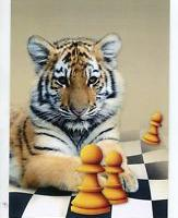 The_Bengal_Tiger