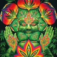 psychedelichigh