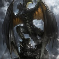 blackdragon71