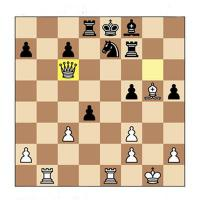 chessmatess's picture