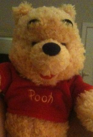 the_POOH