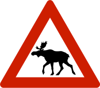 CommonElk