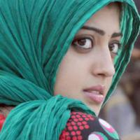 majoos04's picture