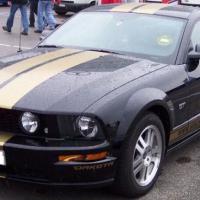 mustang2001's picture