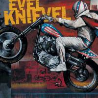 evelknievel2000