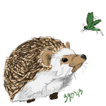 Hedgy22