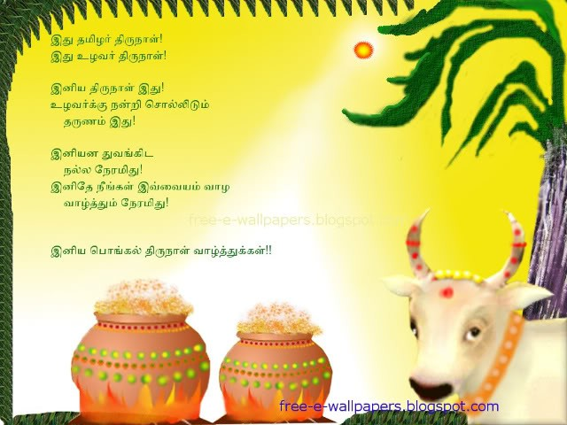 short essay on pongal festival Pongal is the biggest harvest festival for the people of tamil nadu essay on pongal festival category: short essay on eid festival.