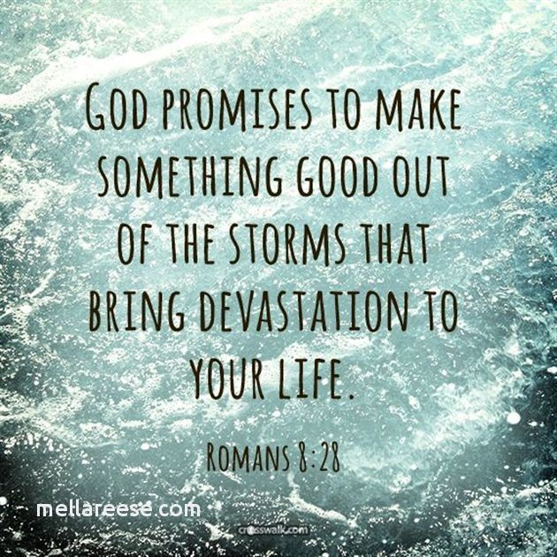 encouraging-bible-quotes-lovely-10-best-images-about-inspirational-quotes-on-pinterest-of-encouraging-bible-quotes.jpg