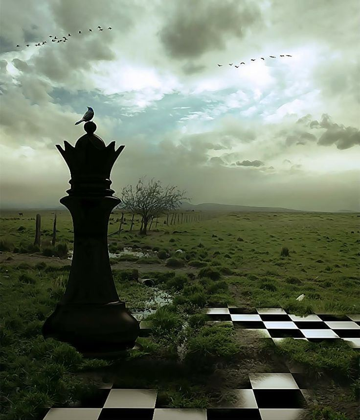 Image result for Pics Of Chess and Mountains and roses