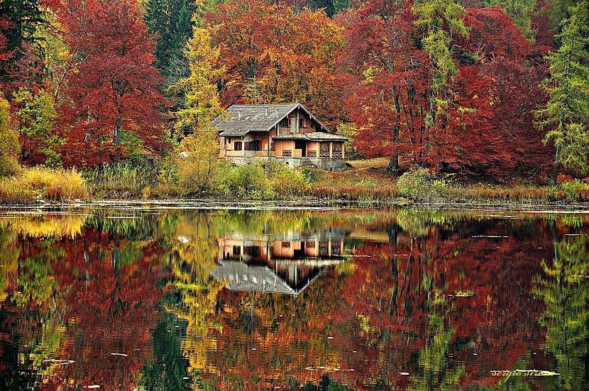Risultati immagini per Trentino alto adige autunno
