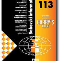 Garry's Choice - Informant 113