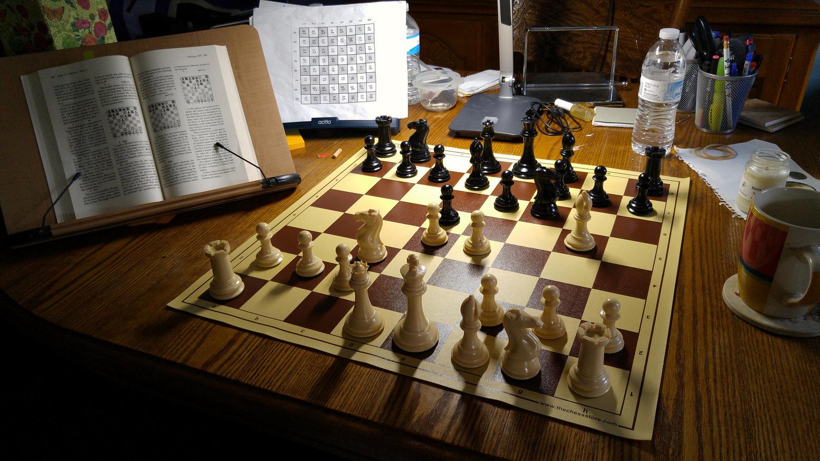 The Best Plastic Chess Set Ever The Windsor Castle Set