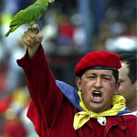 president_chavez's picture
