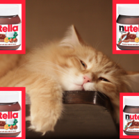 lazynutella
