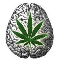 Ganja_in_my_brain