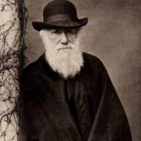 CharlesDarwin1859's picture