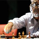 TigerChess