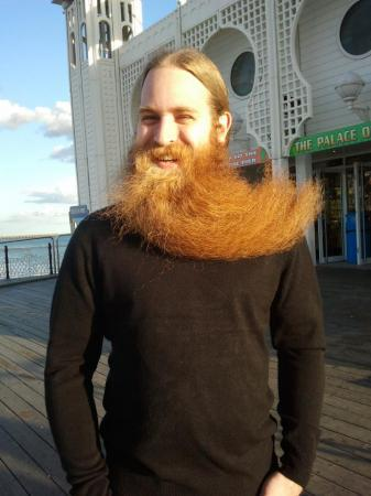 BeardedKnight