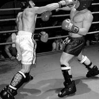 Modern Fights
