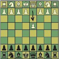 Options for Black vs. 1.d4
