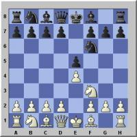 The Petroff Defense by GM Arun and GM Magesh