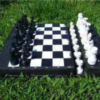 Openings for Tactical Players: How to beat a Grandmaster
