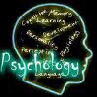 The Cognitive Psychology of Chess