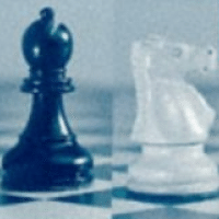 The Knight v. The Bishop
