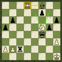 Video Series: Intermediate Checkmates