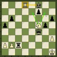 Video Series: Intermediate Checkmates