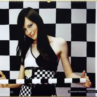 Women's World Team Chess Championship: Part II