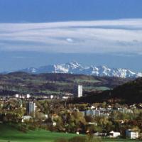 The Winterthur Endgame