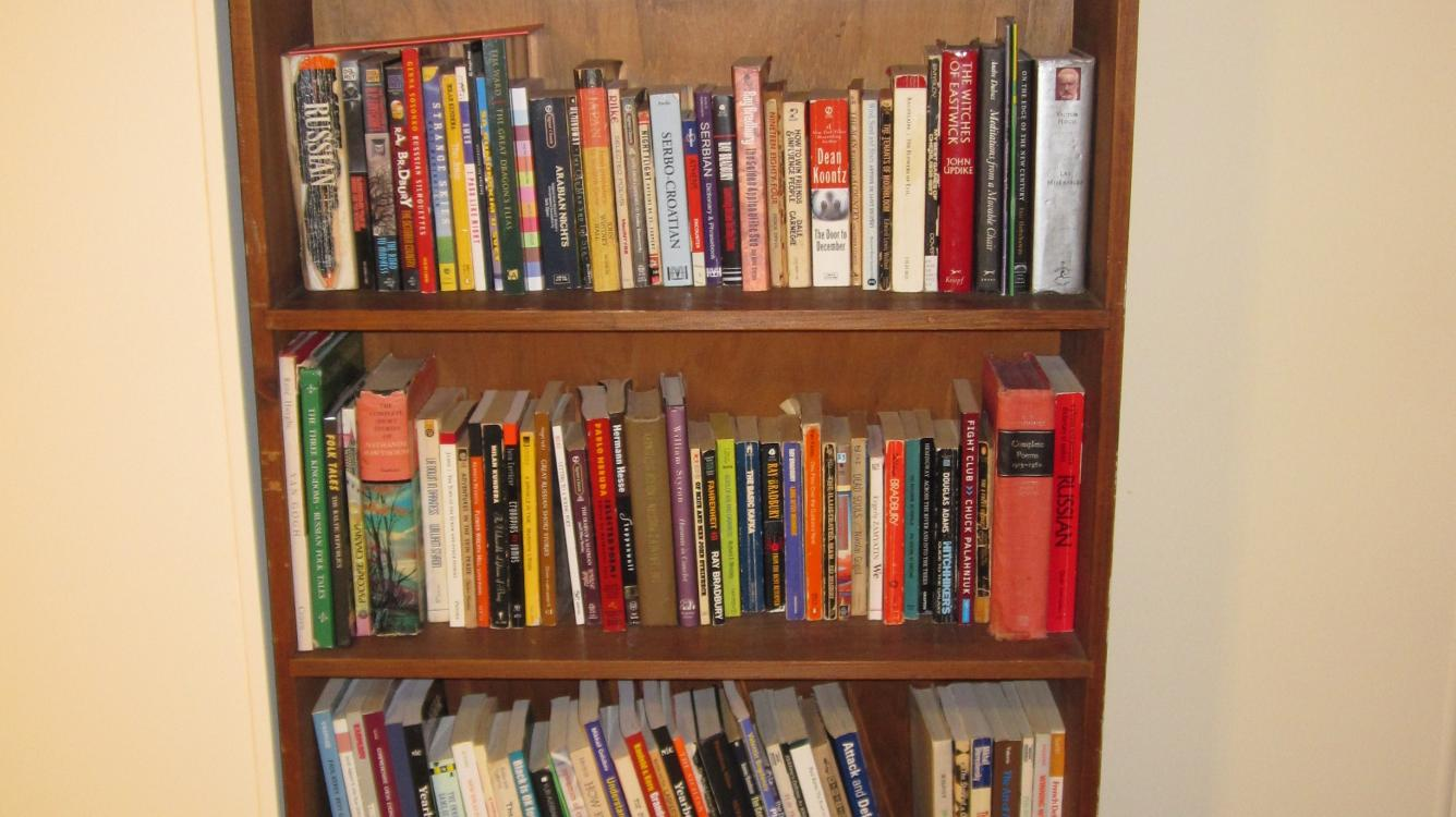 "My Bookshelf: ""Larsen's Selected Games of Chess"""