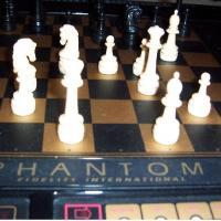The Ghost In The Chess Machine