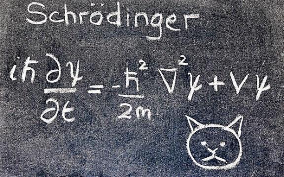 Schrödinger's Chess Puzzle