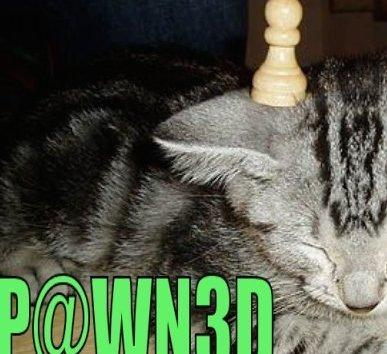 """The """"Suicidal"""" Pawn Storm"""