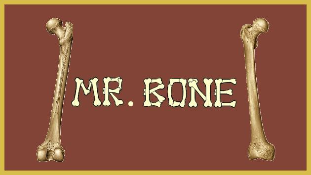 Mr. Bone