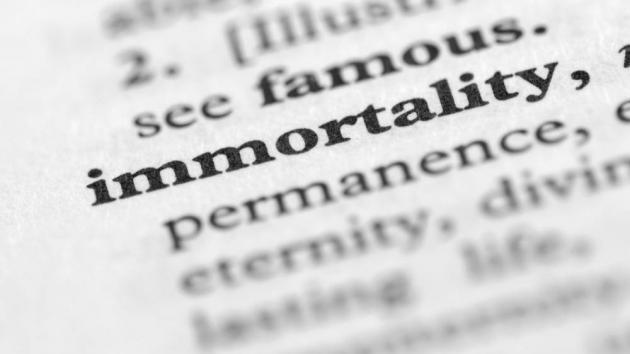 The Modern Immortal By Wei Yi