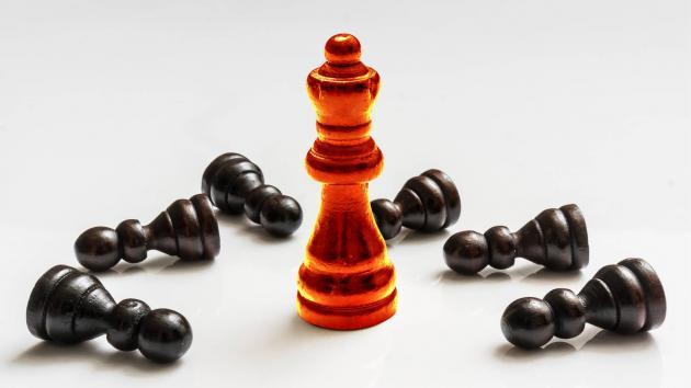 Master vs Many: Vote Chess Games