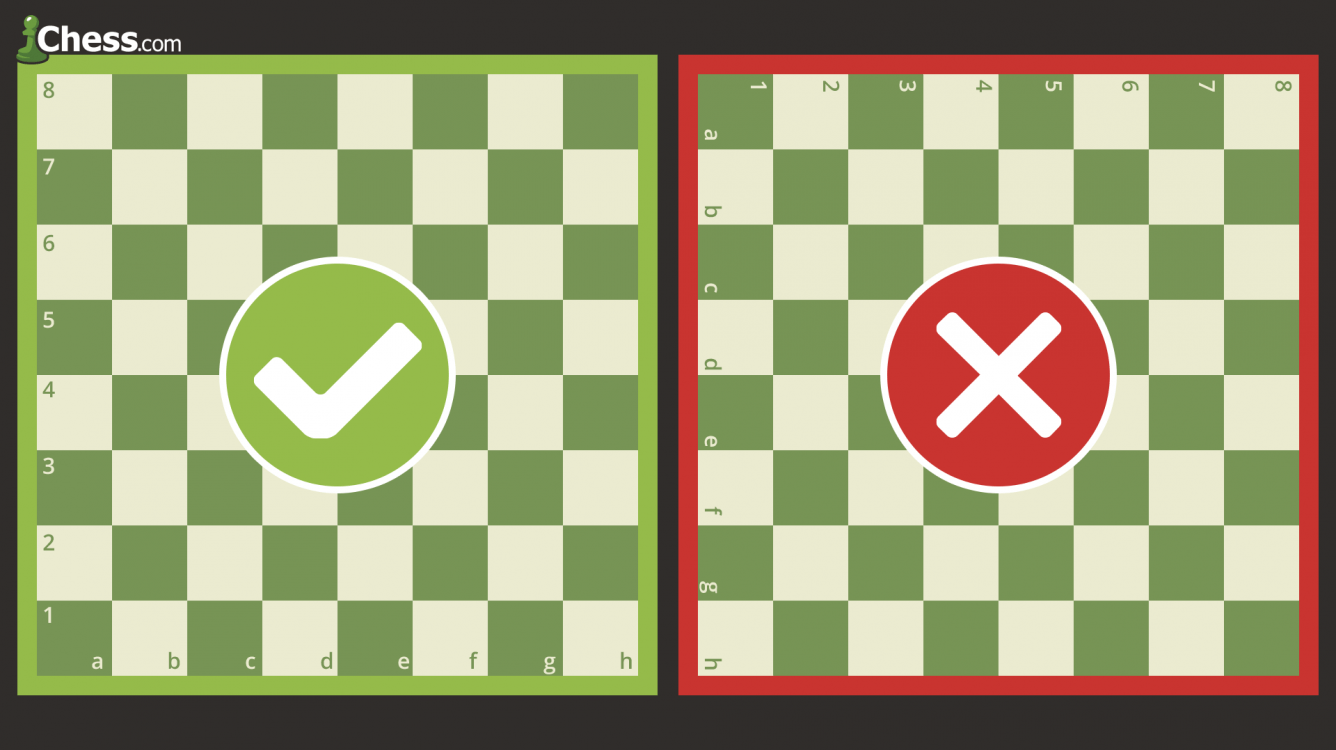 How To Set Up A Chessboard
