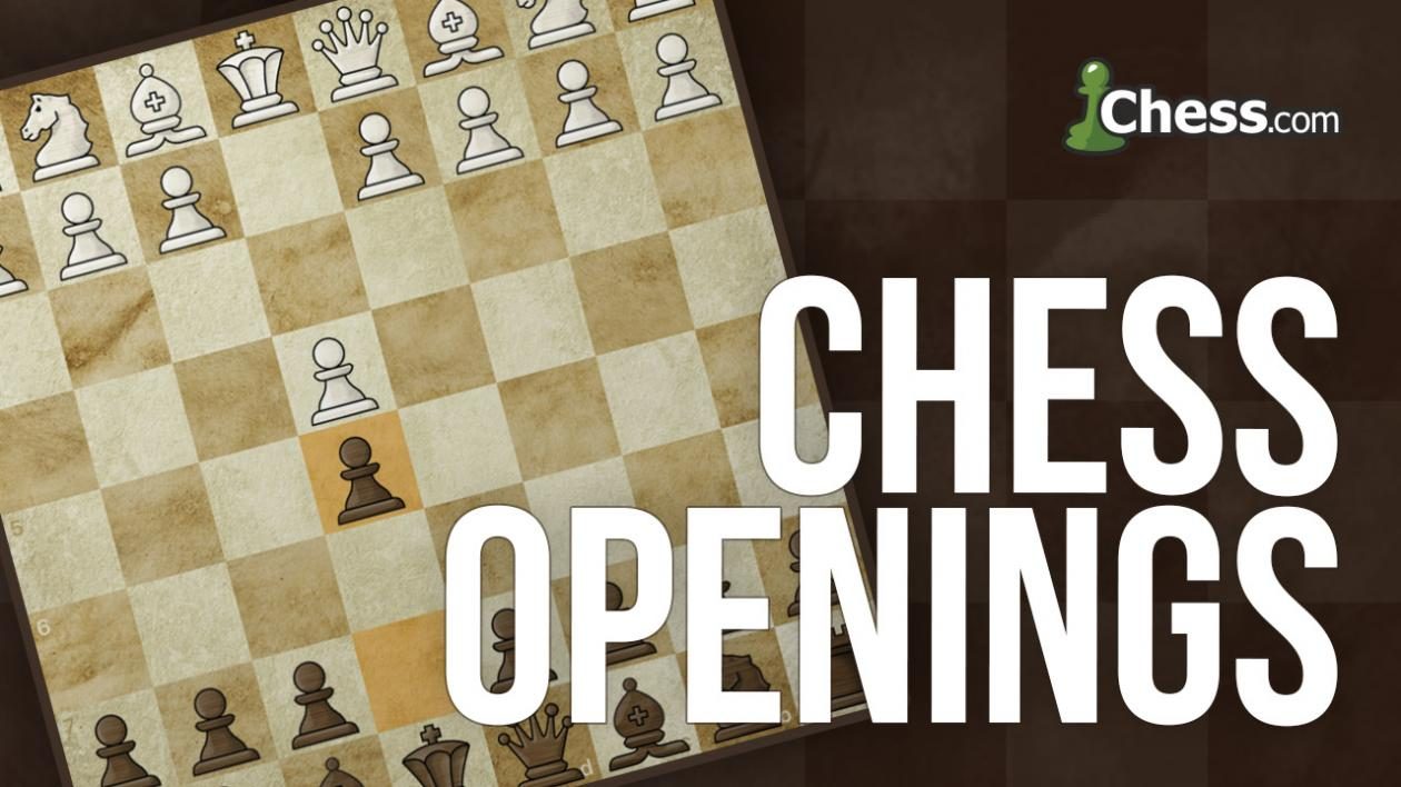 beginner chess openings
