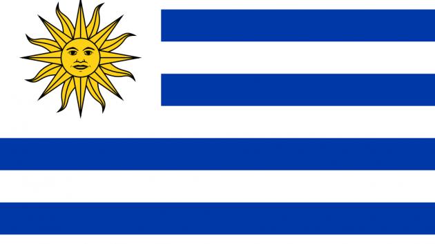 Die neuen Leiden des jungen Trainers - Jugendweltmeisterschaften in Uruguay