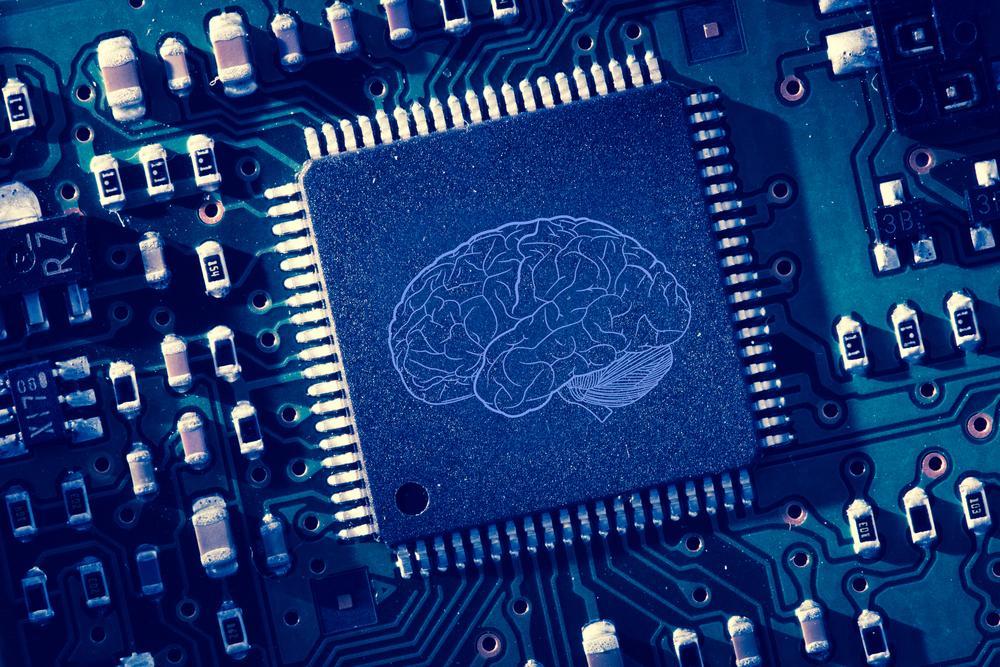 What's Inside AlphaZero's Chess Brain?