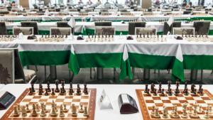 七項最有吸引力的象棋記錄