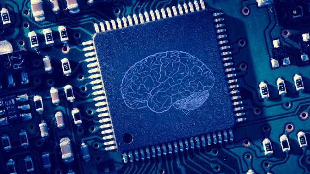 ¿Qué hay en el cerebro de AlphaZero?