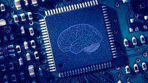 Qu'y a-t-il dans le cerveau échiquéen d'AlphaZero ?