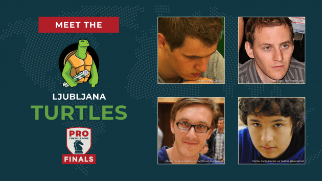 PRO Chess League Semifinals: Meet The Turtles!
