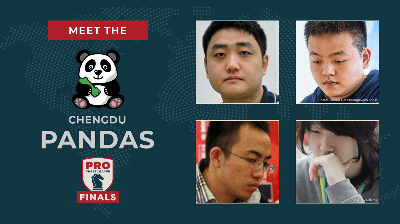 PRO Chess League Semifinals: Meet The Pandas!